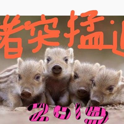今年は猪突猛進で❣️ 明日はnpp2019じゃんけんの乱参加の記事に添付されている画像