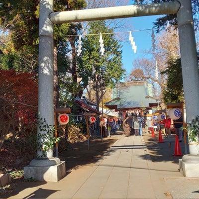 伊勢原大神宮から平塚の前鳥神社への記事に添付されている画像