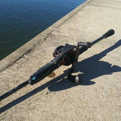 初釣りへの記事に添付されている画像