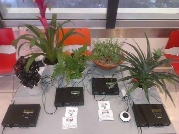 植物の音楽の記事より