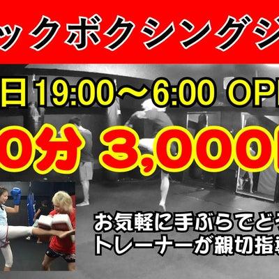 ホストのクラブ活動 キックボクシング 新宿スポーツジムの記事に添付されている画像