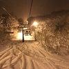 スノーボード合宿の画像