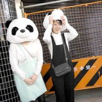 #2018#渋谷ハロウィンの記事に添付されている画像
