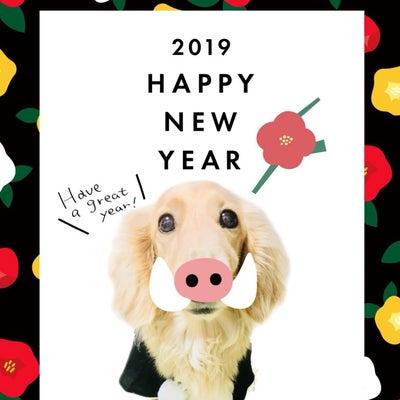 2019年も素晴らしい年になりますように*の記事に添付されている画像