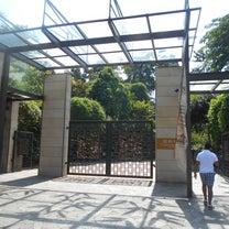 シンガポール植物園(1)の記事に添付されている画像