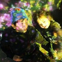 ベビーと小学生が行く チームラボボーダレスお台場の記事に添付されている画像