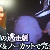 水戸斉昭の息子が何故、一橋家の養子になり、将軍になるのか?の記事に添付されている画像
