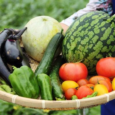 [末期がんにならない食事術]210:体に良くない食品を避け、良い食品を多く摂取すの記事に添付されている画像
