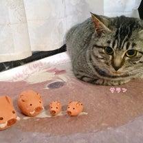 子連れイノシシと猫の記事に添付されている画像