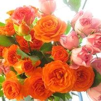 ドライフラワーになる前の薔薇達の記事に添付されている画像