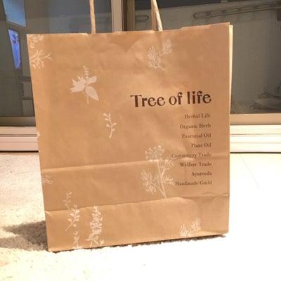 店舗限定!超お得な生活の木3240円福袋発見!の記事に添付されている画像