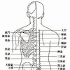不整脈に鍼灸治療の画像