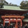 * 氷川神社三社巡りが出来ましたの画像