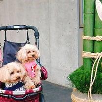 わんこ旅行 レジーナリゾート箱根雲外荘の記事に添付されている画像