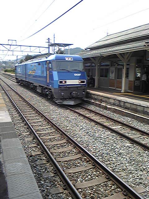 DVC00375.jpg