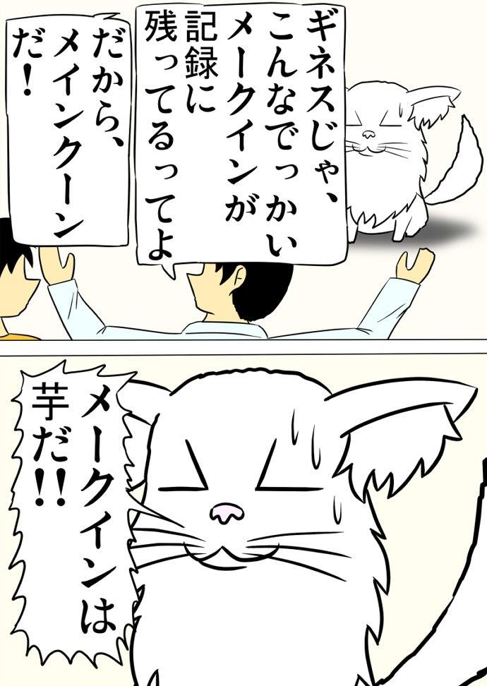 オレンジ色のシャツの少年の傍らの両手を広げて猫の種類の名前を言い間違える水色の少年に怒鳴って間違いを指摘する白いメインクーン猫
