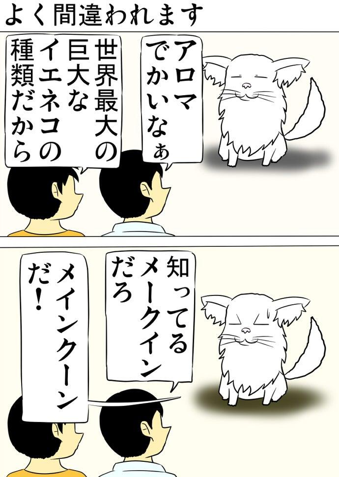 オレンジ色のシャツの少年の傍らの猫の種類の名前を言い間違える水色のシャツ少年に間違いを指摘する白いメインクーン猫
