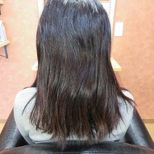 乾かすだけで柔らかツヤ髪に・・高難易度縮毛矯正☆の画像
