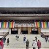 成田山新勝寺の画像