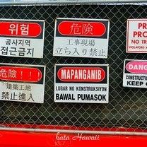 Hawaii☆危険がいっぱい♡の記事に添付されている画像