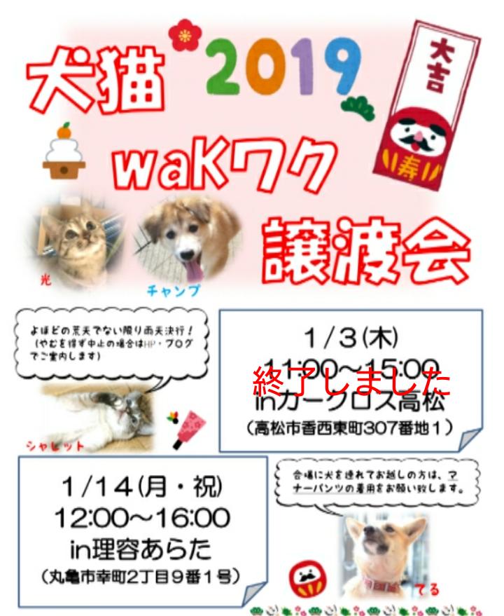 第115回】犬猫waKワク譲渡会のお知らせ | waKwaKsunのブログ