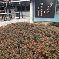 京都 東山あたりの記事に添付されている画像