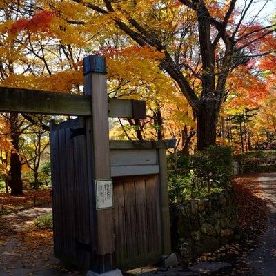 紅葉の札幌…5の記事に添付されている画像