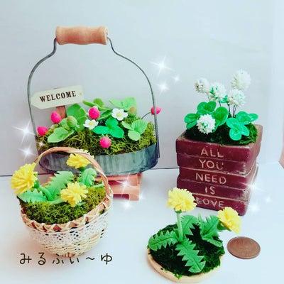幸せを呼ぶ花シリーズ( ^-^)ノ∠※。.:*:・'°☆の記事に添付されている画像