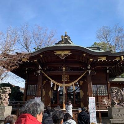 猫がいる前玉神社へ♪おみくじひいたら2人とも大吉~♪の記事に添付されている画像