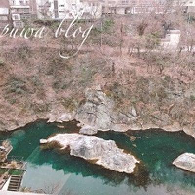 予算半額で行けた♡冬ボーナスで行く贅沢鬼怒川温泉旅行♪の記事に添付されている画像