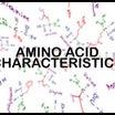 酵素ドリンク!? アミノ酸の補給。