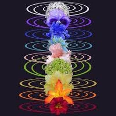現実をしっかり生きる(Lotus body・女体施術・こつばんていきんクラス・ハの記事に添付されている画像