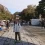 鎌倉から金沢文庫へ