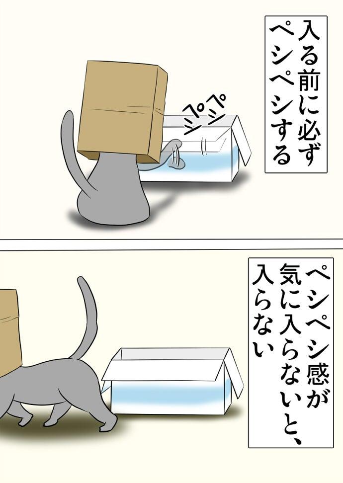 右前脚で水色のラインの描かれた白いダンボール箱の縁を叩いて去っていく茶色い紙袋を被ったロシアンブルー猫