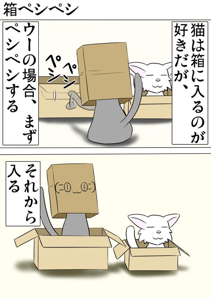 白い子猫の入ったダンボール箱の傍らのダンボール箱の縁を左前脚で叩いてから入る顔文字の書かれた茶色い紙袋を被ったロシアンブルー猫