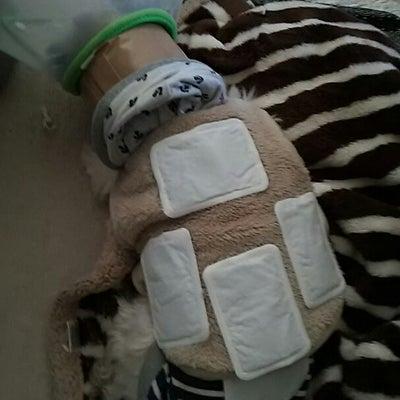 ひびき救急事態の記事に添付されている画像