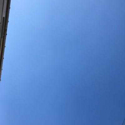 今日はタロ、ジロの日の記事に添付されている画像