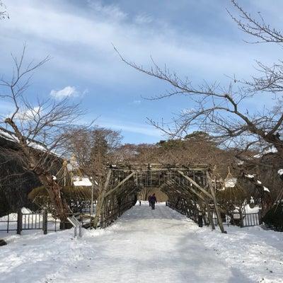 函館2泊3日の旅 2日目【五稜郭】の記事に添付されている画像
