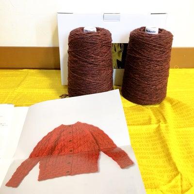 編み物と読書と睡眠( ̄ー ̄)b一見優雅そうな連休を過ごしたブログの記事に添付されている画像