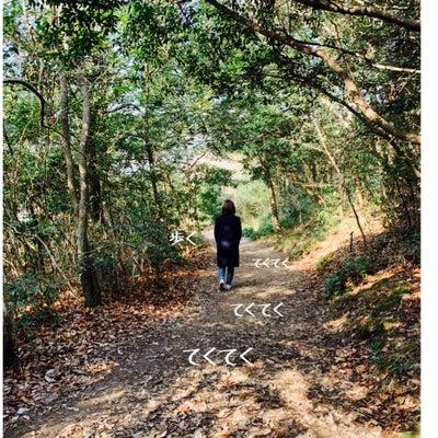 篠栗九大の森でお手軽森林浴!の記事に添付されている画像
