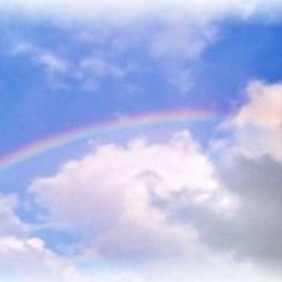 虹の橋の向こうで。の記事に添付されている画像