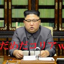 【2019.01.17】#今日のだめだコリア。w  #北朝鮮 は継続注視する<丶の記事に添付されている画像