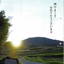 奈良県桜井市の広報の地域猫特集の記事に添付されている画像