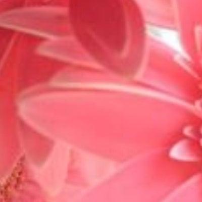 1/15 誕生日月別今日のメッセージの記事に添付されている画像