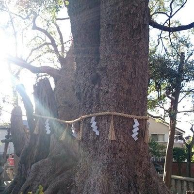 和歌山県と大阪府でのご神業ご報告・信太森稲荷神社(大阪府)の記事に添付されている画像