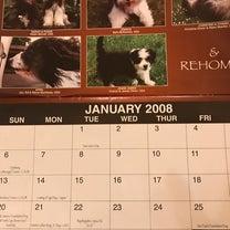 エコかケチなのか カレンダーの記事に添付されている画像