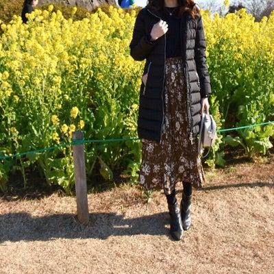 【UNIQLO】もう1枚買えばよかったニット×大人にぴったりな花柄スカートの記事に添付されている画像
