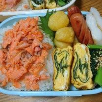 鮭弁当と床下探検隊の記事に添付されている画像