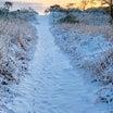 爆弾低気圧で雪が降る天気予報から〜The Day 最高の波でサーフィンできるのか〜♪