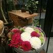山口の素敵な花屋:LITOFUさん